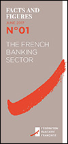 The French Banking Sector in 2016
